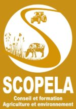 Logo scopela
