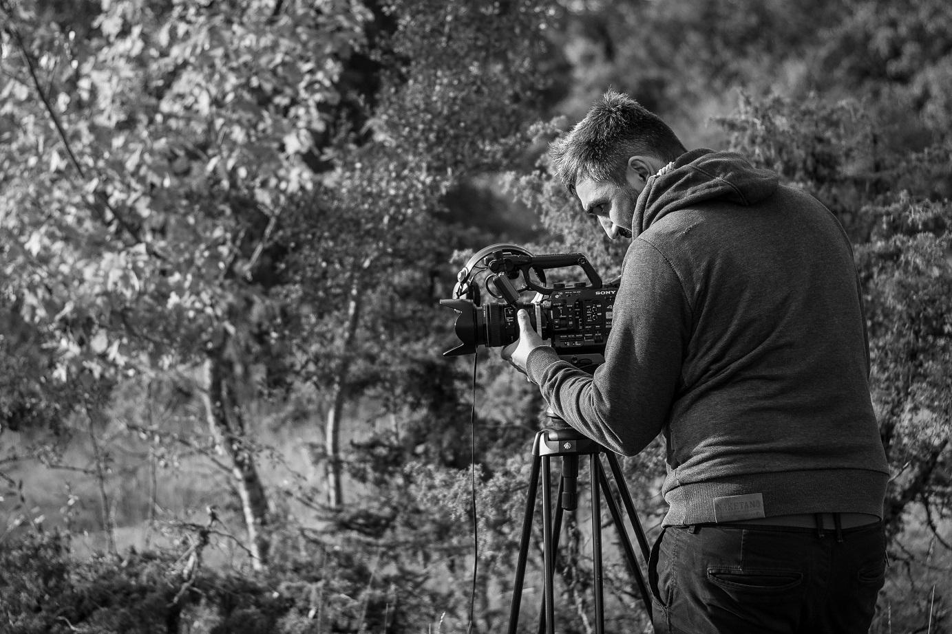 Caméras et Pâturages